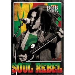 Bob Marley - Poster 3D - Soul Rebel
